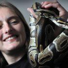 Niche Pet-sitting service slithers into Sunderland