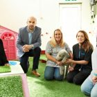 Jacksons Law Firm advise owners of Middlesbrough Dog Day Care Centre